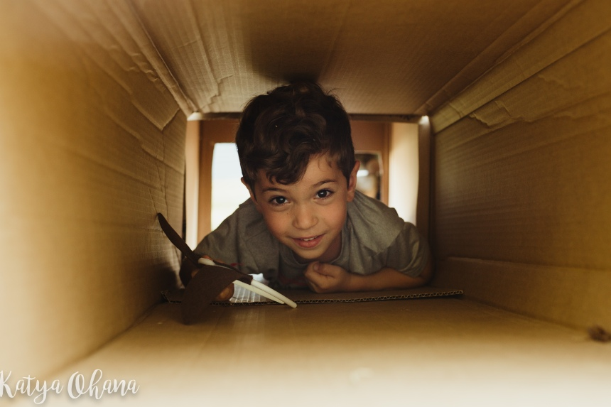 livy in cardboard